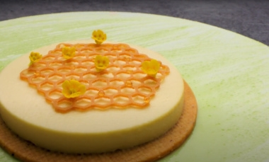 Honey and fennel cheesecake