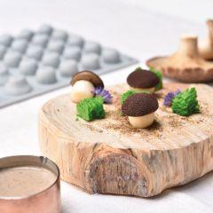 Pavoni Italia silicone mould Gourmand 300x175 mm Mushroom