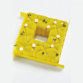 KE037-Square-silicone pastry mould