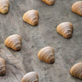 Silicone mould for mignong sfogliatella Pavoni italia